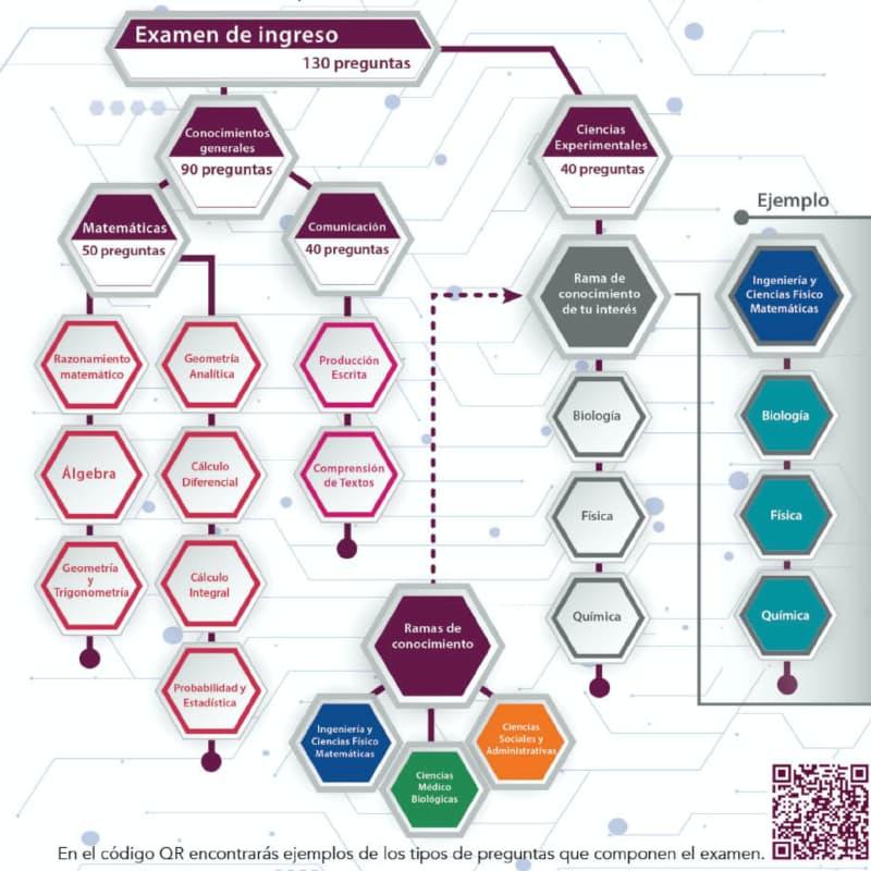 estructura del examen ipn